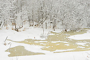 Ice on pond during a snow storm<br /> Thunder Bay<br /> Ontario<br /> Canada