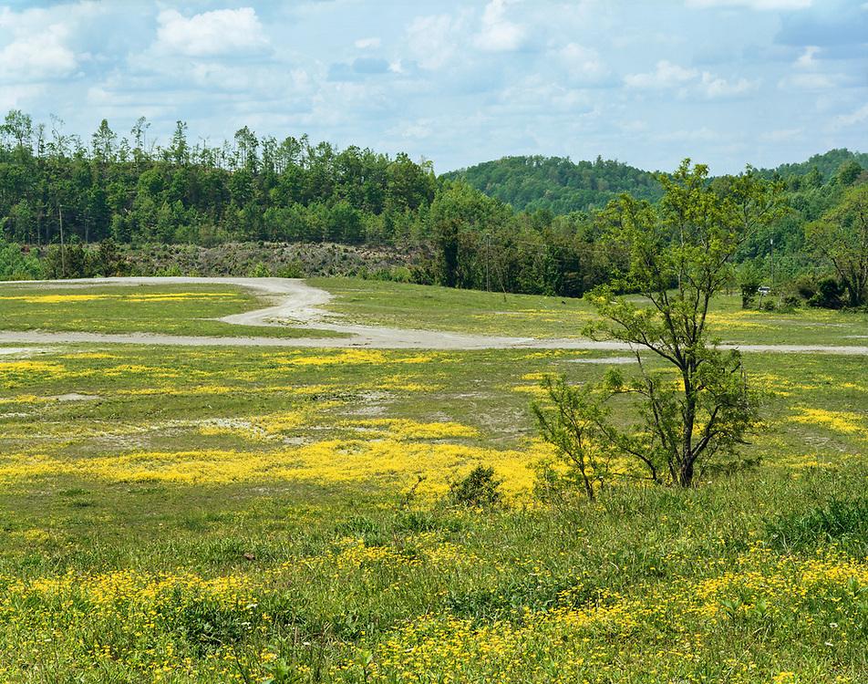 Dingo Mountain, Harlan County, Kentucky 21.05.19