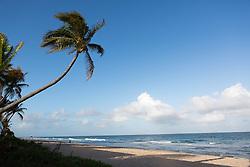 beautiful beach in Fort Lauderdale, FL