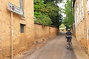 Cyclist on the road to Pernand Vergelesses and Beaune. Aloxe-Corton village, Cote de Beaune, d'Or, Burgundy, France
