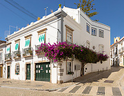 Bougainvillea plant in flower growing on whitewashed house old town, Tavira, Algarve, Portugal, southern Europe