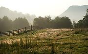 Early Morning sun & flower meadows, Brasov-Buzau area, Romania