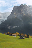 Swiss houses on high Alpine pastures looking towards the Wetterhorn - Grindelwald Switzerland .<br /> <br /> Visit our SWITZERLAND  & ALPS PHOTO COLLECTIONS for more  photos  to browse of  download or buy as prints https://funkystock.photoshelter.com/gallery-collection/Pictures-Images-of-Switzerland-Photos-of-Swiss-Alps-Landmark-Sites/C0000DPgRJMSrQ3U