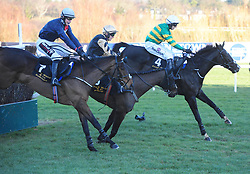 Voix Du Reve ridden by Paul Townend (centre) falls at the last fence in the Frank Ward Solicitors Arkle Novice Chase leaving Le Richebourg ridden by Mark Walsh (far) to win during day one of the Dublin Racing Festival at Leopardstown Racecourse.