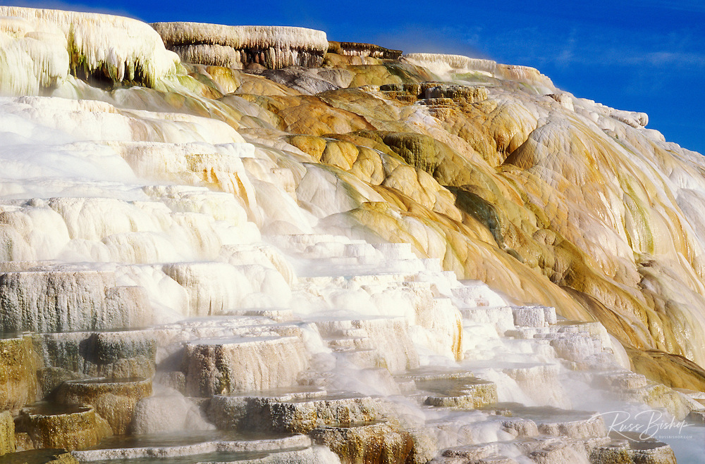 Morning light on terraces at Canary Spring, Mammoth Hot Springs, Yellowstone National Park, Wyoming
