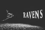 June 1, 2019<br /> Baltimore Ravens Beach Bash in Ocean City, MD.