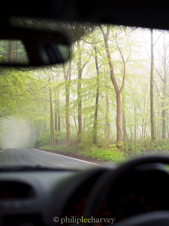 A car driving down a misty country road in Surrey, UK