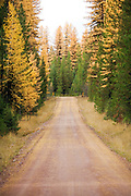 Backroad near Ovando, Montana
