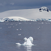 Small piece of ice float on the gray water on an overcast day near Cuverville Island on the Antarctica Peninsula.