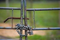 Metal farm gate with chain and padlock