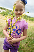 Polish girl age 6 holding a bouquet of probable agrimony flowers growing wild near her home. Zawady Central Poland