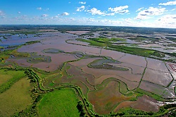 Vista aérea de uma lavoura de arroz. FOTO: Jefferson Bernardes/Preview.com