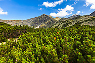 View to the highest peak in Rila Mountains