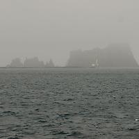Fog shrouds cliffs near Aitcho Island, near the Antarctic Peninsula, Antarctica.