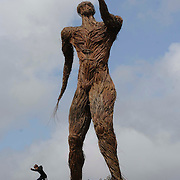 A wicker sculpture of Robert Burns reading a poemfrom a book. It stands over 40ft and is the work of Trevor Leat and Alex Rigg, local artists. The statue will be burned at midnight on Saturday, the culmination of the 8th Wickerman Festival. Held at the festival site near Kirkcudbright.In excess of 18,000 people will witness the burning of the effigy (probably a pagan ritual).  Robert Perry  The Scotsman 23rd July 2009