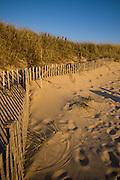 Head of the Meadow Beach