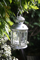 Lantern hanging from leafy wisteria plant in a garden