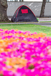 Tents blight the carefully planted floral borders at Marble Arch. Over the last few years London has seen increasing numbers of Eastern European beggars and street performers on its streets as they flock to the UK and other wealthier countries to take advantage of people's generosity. London, August 02 2019.