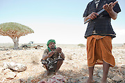 Local men after slaughtering and preparing a goat for meat, Dixsam, Socotra, Yemen