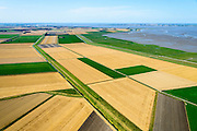 Nederland, Groningen, Oldambt,  05-08-2014; de Reiderwolderpolderdijk tussen de Reiderwolderpolder uit 1870 en de later voltooide de Carel Coenraadpolder uit 1924 (rechts). Beide polders zijn ontstaan door landaanwinning, het inpolderen van kwelders van de Dollard.<br /> Reiderwolderpolder dike between the Reiderwolderpolder from 1870 and the later completed the Carel Coenraad polder from 1924 (above). Both polders were created through land reclamation<br /> luchtfoto (toeslag op standard tarieven);<br /> aerial photo (additional fee required);<br /> copyright foto/photo Siebe Swart