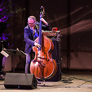 Bassist Reid Anderson of The Bad Plus performs at Libbey Bowl on June 6, 2013 in Ojai, California.
