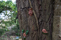 Denham, UK. 4 February, 2020. An ancient poplar tree in Denham Country Park threatened with imminent destruction by the HS2 high-speed rail link is decorated with the figures of tree spirits by environmental activists. Planned works in the immediate area are believed to include the felling of 200 trees and the construction of a roadway, Bailey bridge, compounds, fencing and a parking area.
