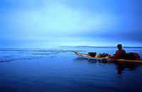 Padle havkajakk, sea kayak, is, ice