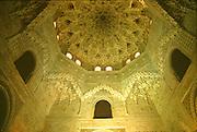 SPAIN, ANDALUSIA, GRANADA Alhambra ceiling plasterwork