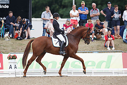 Darcourt Caroline, (SWE), Sankt Erik II<br /> First Qualifier 6 years old horses<br /> World Championship Young Dressage Horses - Verden 2015<br /> © Hippo Foto - Dirk Caremans<br /> 07/08/15