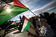 Albuquerque Gaza protests