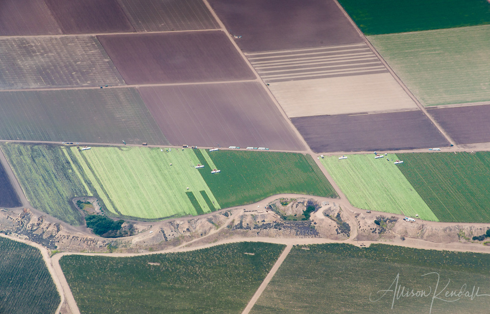 Aerial of agricultural fields during harvest season, the landscape divided by a dry sandy escarpment.