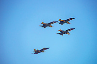 Four Blue Angels in Practice Drill