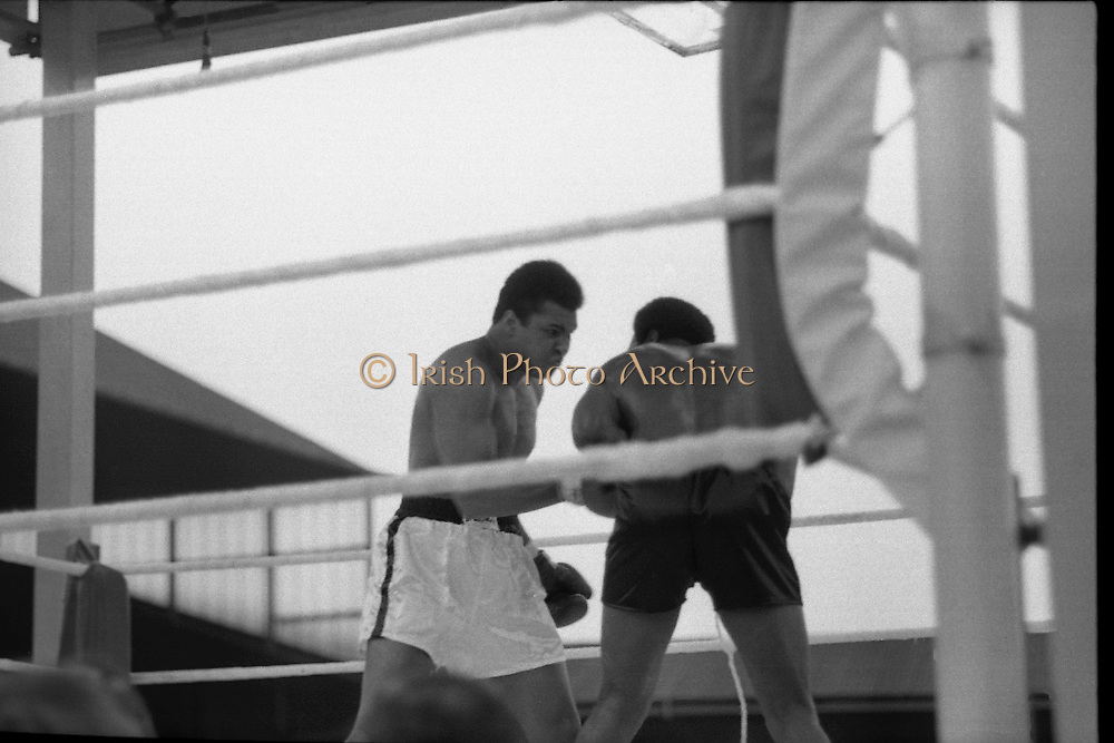 Ali vs Lewis Fight, Croke Park,Dublin.<br /> 1972.<br /> 19.07.1972.<br /> 07.19.1972.<br /> 19th July 1972.<br /> As part of his built up for a World Championship attempt against the current champion, 'Smokin' Joe Frazier,Muhammad Ali fought Al 'Blue' Lewis at Croke Park,Dublin,Ireland. Muhammad Ali won the fight with a TKO when the fight was stopped in the eleventh round.<br /> <br /> Image of Ali carrying the fight to Lewis.