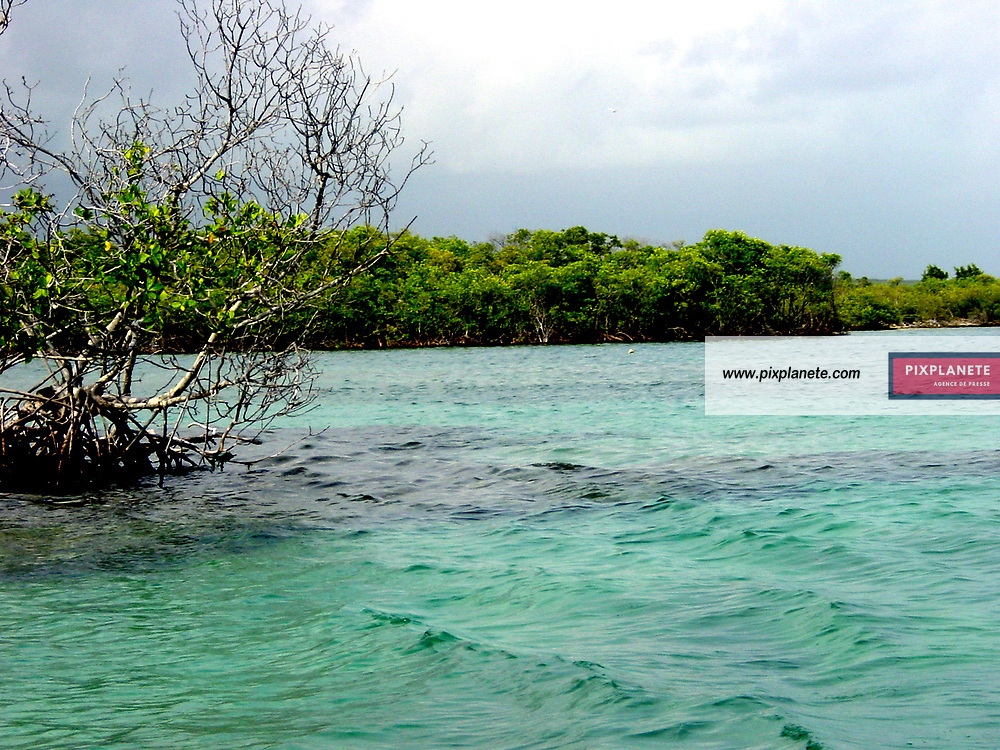 Sujet tourisme sur l'ile de Porto Rico - Puerto Rico Island - 7/2006 - JSB / PixPlanete