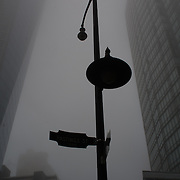 A downtown street light in a foggy silhouette. Vancouver, BC. Photo: © Rod Mountain