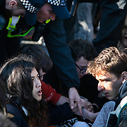 Thousands of Extinction Rebellion activists took over 5 bridges in Central London and blocked them for the day, November 17 2018, Central London, United Kingdom. Lambeth Bridge; young activists huddle together to make it harder for police to arrest them. Around 11am people on all bridges sat down in the road and blocked traffic from coming through and stayed till late afternoon. The actvists believe that the government is not doing enough to avoid catastrophic climate change and they demand the government take radical action to save future generations and the planet. Many are willing to be arrested peacefully protesting and up to 80 were arrested on the day.Extinction Rebellion is a grass root climate change group started in 2018 and has gained a huge following of people commited to peaceful protests and who ready to be arrested. Their major concern is that the world is facing catastropohic climate change and they want the British government to act now to save future generations.