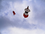 01 AUGUST 2017 - UBUD, BALI, INDONESIA: Kites in the air over Ubud. Kite flying is a popular past time on Bali. It originally had religious connotations, it was used to ask the gods for bountiful rains and harvests. The kites are large. Small ones, flown by individuals are about two meters long, larger ones flown by teams of up to 80 people are ten meters long. There are three shapes of traditional kites, bebean (fish-shaped), janggan (bird-shaped) and pecukan (leaf-shaped). The pecukan is the most unstable and difficult to fly.    PHOTO BY JACK KURTZ