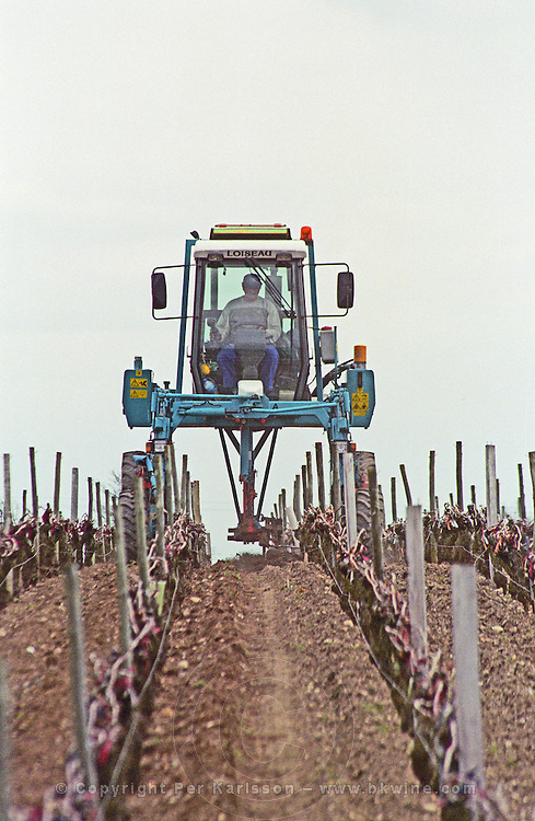 Special plough clearing soil around the vines. Chateau Giscours, Margaux, Medoc, Bordeaux, France