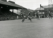 League of Ireland vs Liverpool FC.    (M87)..1979..18.08.1979..08.18.1979..18th August !979..In a pre season friendly the League of Ireland took on Liverpool FC at Dalymount Park Phibsborough,Dublin. The league team was made up of a selection of players from several League of Ireland clubs and was captained by the legendary John Giles. Liverpool won the game by 2 goals to nil..The scorers were Hansen and McDermott..A league player attempts an acrobatic clearance as a Liverpool player closes in.
