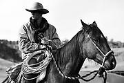 Cowboy on Montana ranch.