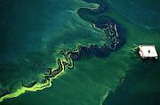 Como una cicatriz que deja huellas en la piel, se reflejan las gigantescas extensiones de petróleo derramado en el Lago de Maracaibo en el estado Zulia tras años de explotación petrolera en el subsuelo acuático.