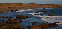 Piedras Blancas Beach, Central California Coast. Image taken with a Nikon D3x and 70-300 mm VR lens (ISO 100, 116 mm, f/8, 1/400 sec).