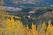 The Alaska Railway train passes over a river valley tressel in the fall near Denali National Park entrance.