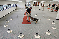 August 15, 2017 - Arden Hills, MN, USA - Officer Rob Hurst with the Duluth Police Department plays tug of war with his dog Hondo, a 3-year-old German Shepherd, as a reward after he detected explosive elements contained in some of the empty paint cans arranged on the floor during a training scenario Tuesday, Aug. 15, 2017 in Arden Hills, Minn. (Credit Image: © Anthony Souffle/TNS via ZUMA Wire)