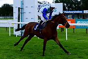 Dutch Schultz ridden by Rob Hornby and trained by Ralph Beckett ridden in the Sky Sports Racing Sky 415 Novice Stakes - Mandatory by-line: Ryan Hiscott/JMP - 24/08/20 - HORSE RACING - Bath Racecourse - Bath, England - Bath Races