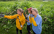 """Lands' End employees having fun at the Clean Lakes Alliance """"Renew the Blue"""" volunteer day. (Photo © Andy Manis)"""