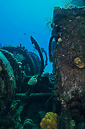 Deck Wenches Incrusted in Coral, Doc Paulson, Grand Cayman