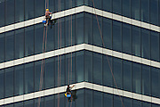 Absiling window cleaners work high above street level of the glass sheets of Westfield City shopping centre in Stratford.