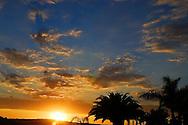 California Sunset, Palms, sky and blazing sun