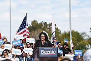 Ada Briceno Chair of the Orange County Democratic Party Speaks at a Bernie Sanders Rally